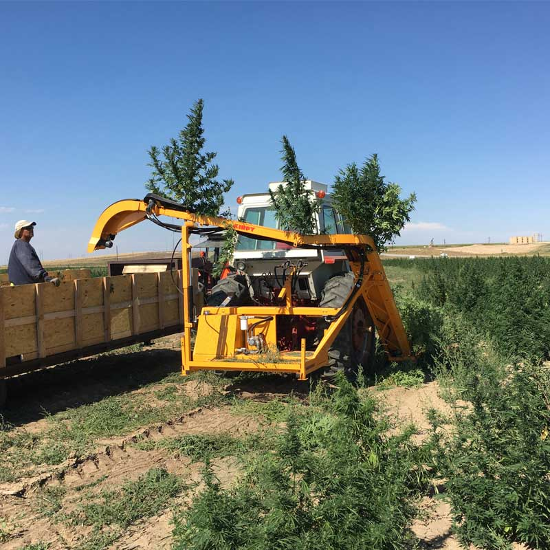 kirpy-automatic-CBD-hemp-harvesting-equipment-for-sale